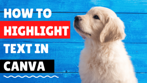 how to highlight text in canva